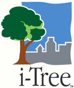 i-tree_logo